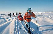 Ski crossing to the North Pole